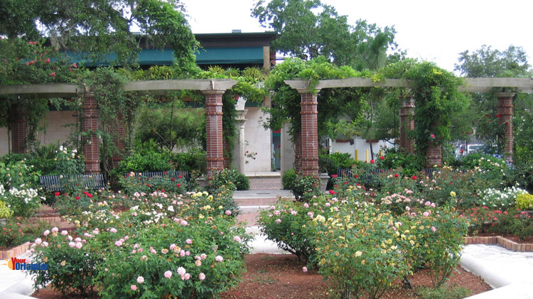 Winter Park, Florida | The Rose Garden at Central Park