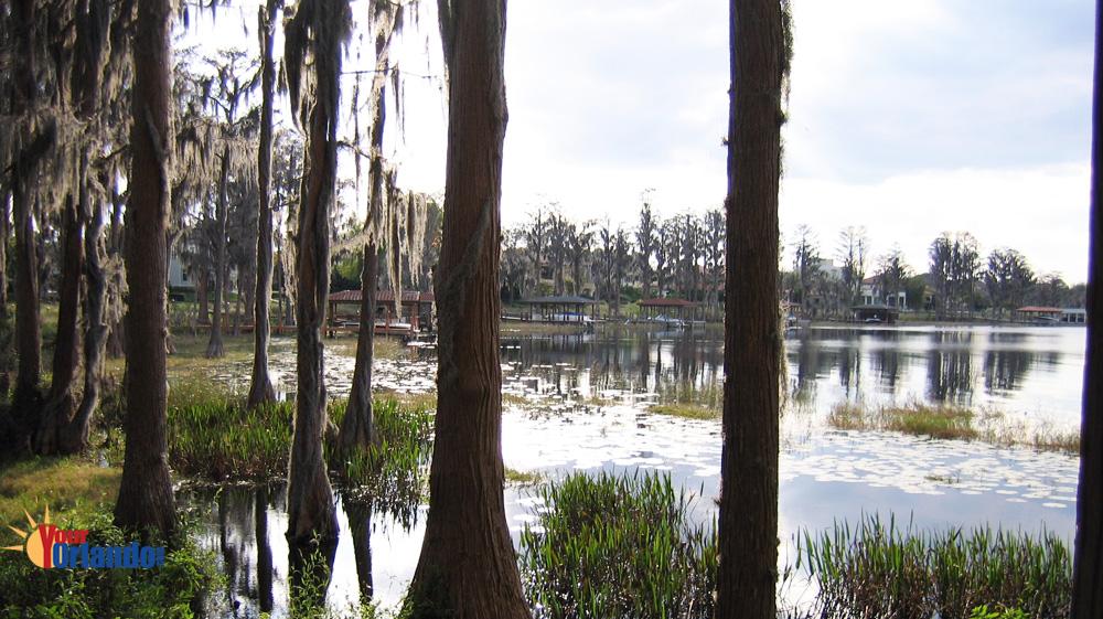 Lake Butler Sound - Windermere, Florida